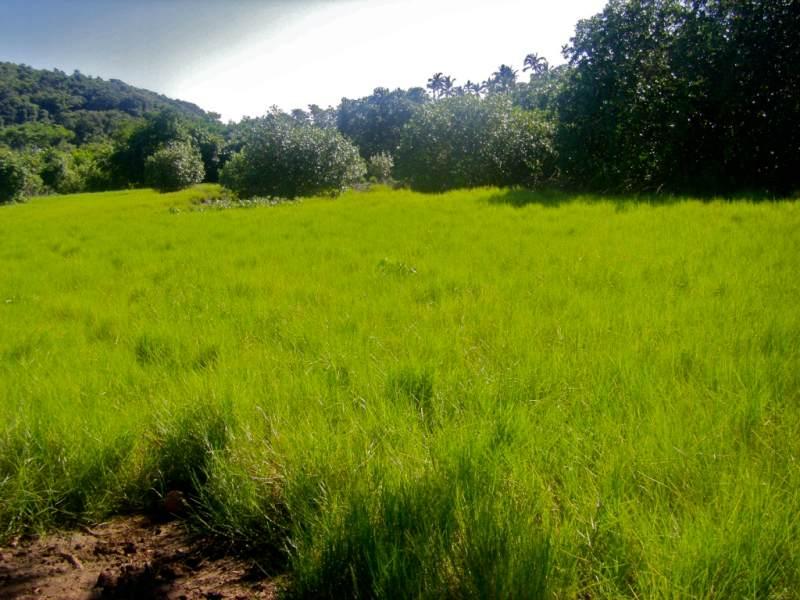 Lomati Village 1