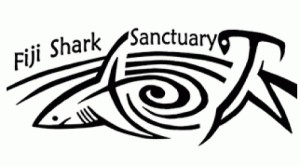 fiji-shark-sanctuary
