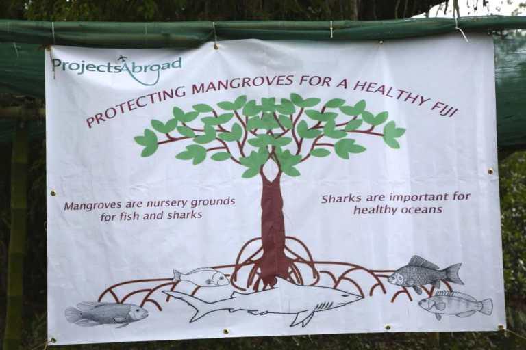 PA mangrove sign