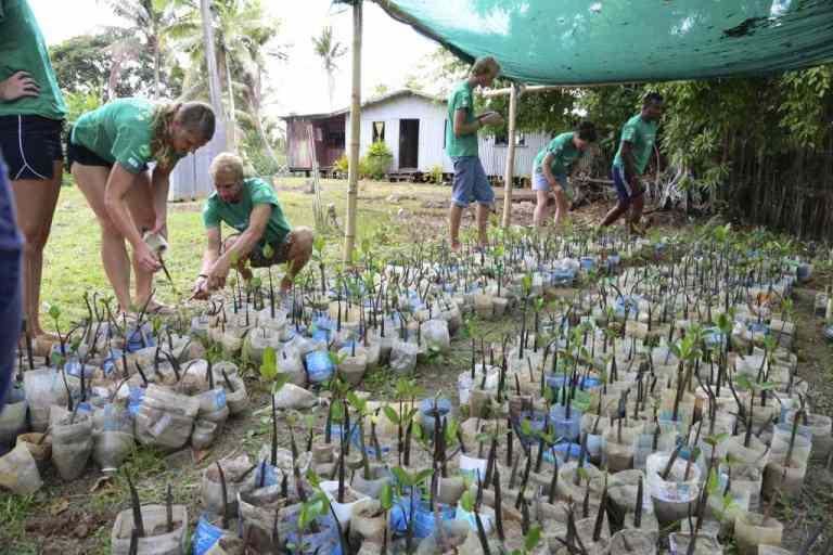 Vunibau nursery 2